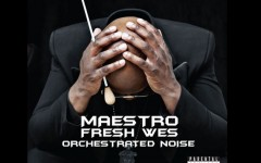 Orchestrated Noise